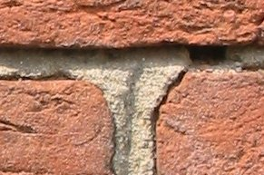 El mortero usado para mantener juntos los ladrillos es un ejemplo de la adhesión.