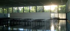 Mies.Crown Hall.4.jpg