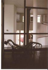 Le Corbusier.casa Curutchet.6.jpg