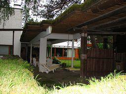 Villa Mairea.3.jpg