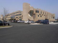 Laboratorios ENDO, Long Island (1960-1967)