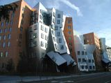 Centro Stata, Cambridge, Massachusetts (1998-2004)