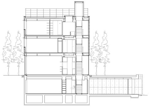 WallLessHouse.Tezuka-.seccion.jpg