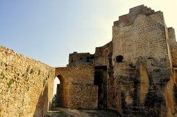 CastilloMontesa.2.jpg