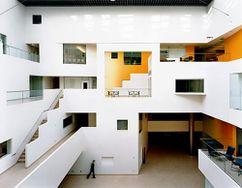 Brain and Cognitive Science Centre, MIT, Cambridge, Massachusetts (2000-2005)