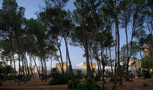 UlarguiPesquera.Palacio congresos Ibiza.jpg