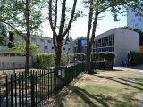 Escuela de Primaria en Hallfiel, Londres (1951-1955)