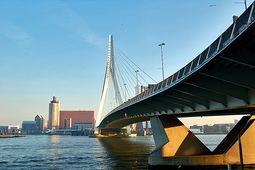 Puente Erasmus.3.jpg