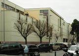Liceo Enriques, Livorno (1961-1972), junto con Edoardo Detti.