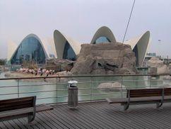 L'Oceanogràfic, Ciudad de las Artes y las Ciencias, Valencia, España.(1994-2002)