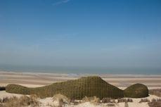 Sandworm Marco Casagrande 2012 013.jpg
