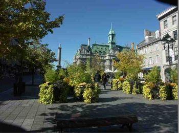 La Plaza Jacques-Cartier