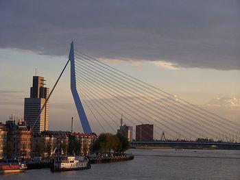 Puente Erasmus.1.jpg