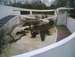 Piscina para pingüinos en el Zoo de Londres (1933-1934)