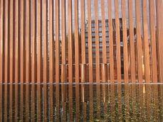 Tadao.TemploKomyoJi7.jpg