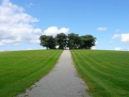 Cementerio del bosque. Asplund.2.jpg
